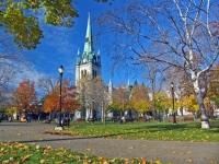 Projet de jeux d'échecs géants au Parc Champlain